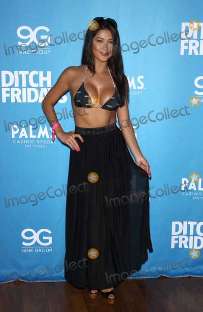 Chuck Liddell Photo - 05 July 2012 - Las Vegas Nevada - Arianny Celeste Chuck Liddell Arianny Celeste and UFC Octagon Girls host official UFC Fight Week Pool Party at Palms Pool  BungalowsPhoto Credit MJTAdMedia