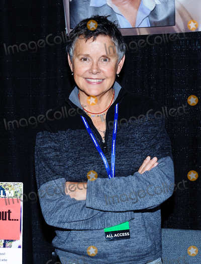 Amanda Bearse Photo - 01 October 2016 - Hamilton Ontario Canada  Actress Amanda Bearse (best known for her role as neighbor Marcy Rhoades DArcy on Married with Children) at Hamilton Comic Con at the Canadian Warplane Heritage Museum Photo Credit Brent PerniacAdMedia