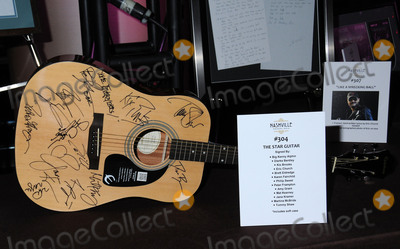 Auction Items Photo - 29 February 2016 - Nashville Tennessee - Auction Items Star Guitar TJ Martell Foundation 8th Annual Nashville Honors Gala held at the Omni Hotel Photo Credit Laura FarrAdMedia