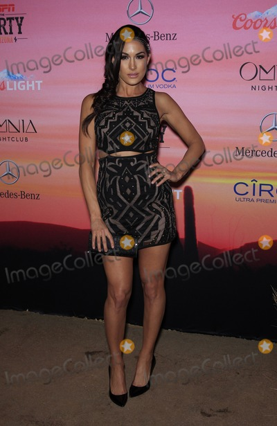 Brie Bella Photo - 30 January 2015 - Scottsdale AZ -  Brie Bella  ESPN The Party at WestworldPhoto Credit mjtAdMedia
