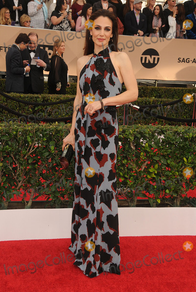 Annie Parisse Photo - 30 January 2016 - Los Angeles California - Annie Parisse 22nd Annual Screen Actors Guild Awards held at The Shrine Auditorium Photo Credit Byron PurvisAdMedia