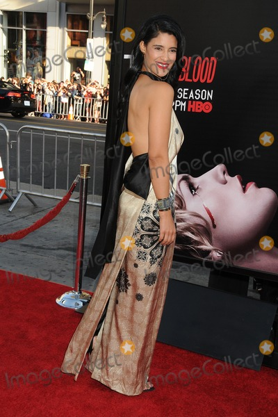 Jessica Clark Photo - 17 June 2014 - Hollywood California - Jessica Clark True Blood Final Season Premiere held at the TCL Chinese Theatre Photo Credit Byron PurvisAdMedia