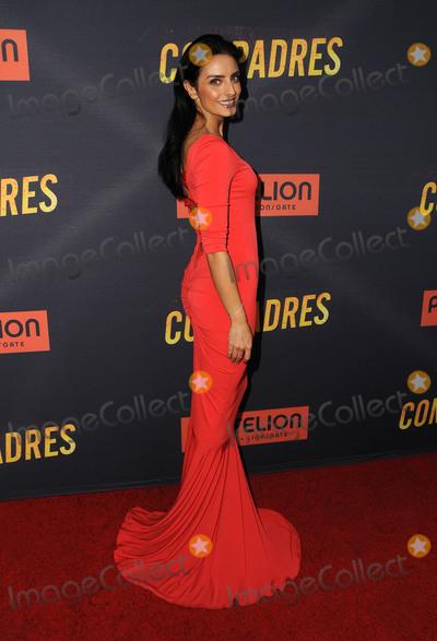 Aislinn Derbez Photo - 19 April 2016 - Hollywood California - Aislinn Derbez Arrivals for the Los Angeles premiere of Compadres held at ArcLight Hollywood Photo Credit Birdie ThompsonAdMedia
