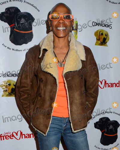 Debra Wilson 2013 Debra Wilson Pictures ...