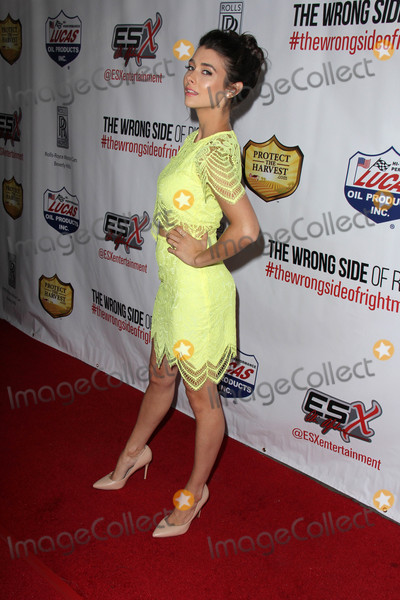 Allison Paige Photo - Allison Paigeat The Wrong Side of Right Premiere TCL Chinese 6 Hollywood CA 07-14-15