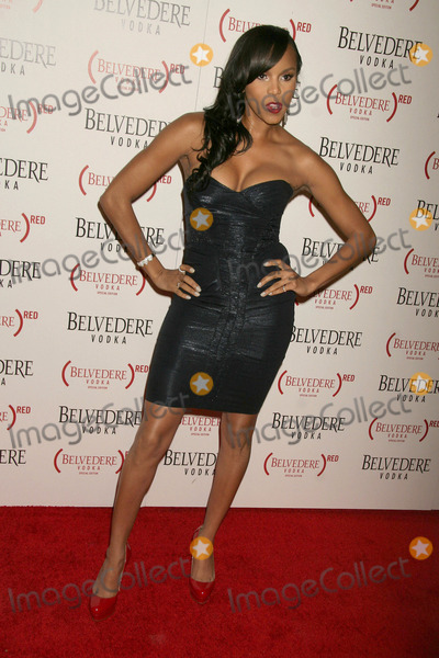 Amerie Photo - Amerie at the Belvedere Vodka (RED) Launch Party Avalon Hollywood CA 02-10-11