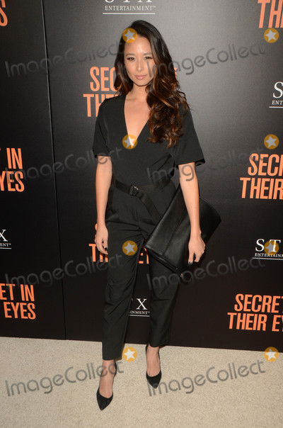 Aja Dang Photo - Aja Dangat the Secret In Their Eyes Los Angeles Premiere Hammer Museum Westwood CA 11-11-15