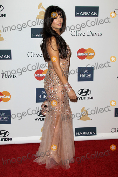 Clive Davis Photo - LOS ANGELES - FEB 9  Bleona arrives at the Clive Davis 2013 Pre-GRAMMY Gala at the Beverly Hilton Hotel on February 9 2013 in Beverly Hills CA
