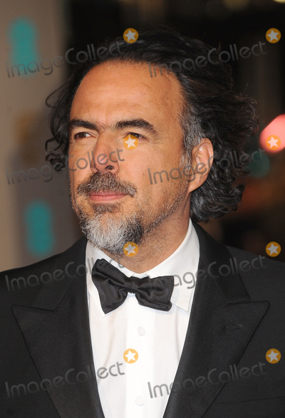 Alejandro GInarritu Photo - LondonUK Alejandro G Inarritu    at the EE British Academy Film Awards (BAFTA) 2016  at the Royal Opera House Covent Garden London 14th February 14th 2016 RefLMK200-59989-150216 Landmark Media WWWLMKMEDIACOM