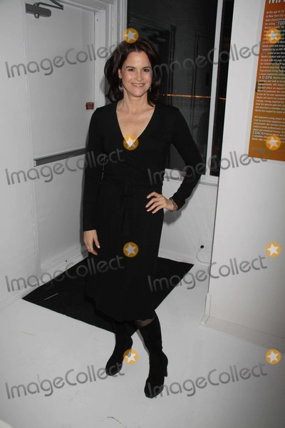 Ally Sheedy Photo - Ally Sheedy the Ali Forney Center Benefit Hosts Its Second Annual Dinner a Place at the Table at Studio 450 W31st 10-6-2011 Photo by John BarrettGlobe Photos Inc