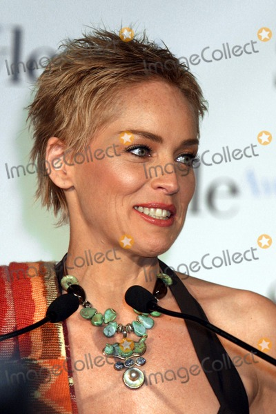 Sharon Stone Photo - 1st Annual Crest White Strips Style Awards Honoring Those Who Make Hollywood Beautiful Hosted by Sharon Stone at the 450 Studio in New York City 4212004 Photo Rick Mackler RangefindersGlobe Photos Inc 2004 Sharon Stone