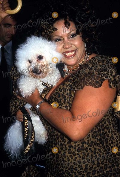 CHEETAHS GIRLS Photo - the Cheetah Girl S Premiere at LA Guardia High School For Music and Arts and Performing Arts New York City 08052003 Photo Barry Talesnick Ipol Globe Photos Inc 2003 Deborah Gregory and Her Dog Cappuccino