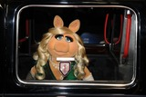 Miss Piggy Photo - Miss Piggy arrives for the premiere of Muppets Most Wanted at the Curzon Mayfair cinema London 24032014 Picture by Steve Vas  Featureflash