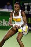 Venus Williams Photo - Spor