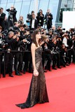 Isabeli Fontana Photo - Isabeli Fontana Premiere Sicario Cannes Film Festival 2015 Cannes France May 19 2015 Roger Harvey