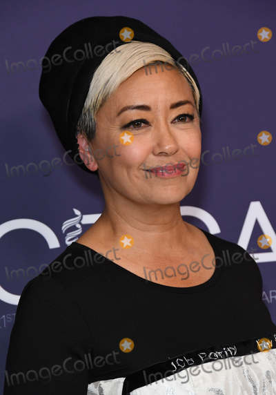 Ann Crabtree Photo - 19 February 2019 - Beverly Hills California - Ann Crabtree 21st CDGA (Costume Designers Guild Awards) held at Beverly Hilton Hotel Photo Credit Birdie ThompsonAdMedia