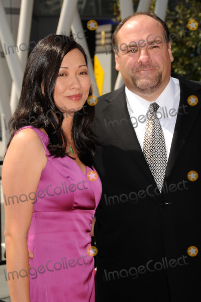 The Sopranos Photo - 19 June 2013 - The Sopranos star James Gandolfini has died at the age of 51 According to multiple sources the three-time Emmy winner suffered a heart attack while on vacation in Italy File Photo 13 September 2008 - Los Angeles California - James Gandolfini and wife Deborah Lin 60th Annual Primetime Creative Arts Emmy Awards - Arrivals at the Nokia Theatre Photo Credit Byron PurvisAdMedia