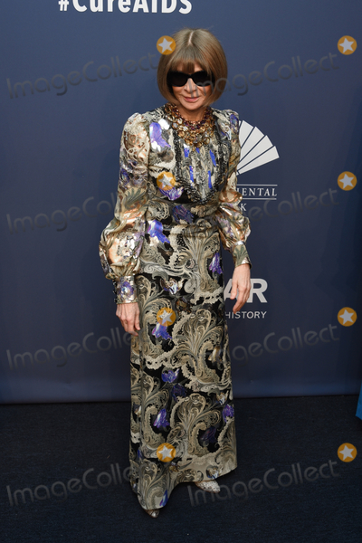 Anna Wintour Photo - 05 February 2020 - New York New York - Anna Wintour at the amfAR Gala New York 22nd Annual Benefit for AIDS Research at Cipriani Wall Street Photo Credit LJ FotosAdMedia