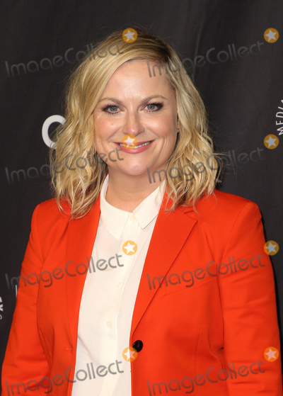 Amy Poehler Photo - 21 March 2019 - Hollywood California - Amy Poehler The Paley Center For Medias 2019 PaleyFest LA - Parks And Recreation 10th Anniversary Reunion held at The Wolf Theatre at The Dolby Theatre Photo Credit Faye SadouAdMedia
