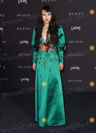 Asia Chow Photo - 03 November 2018 - Los Angeles California - Asia Chow 2018 LACMA Art  Film Gala held at LACMA Photo Credit Birdie ThompsonAdMedia
