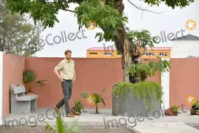 Wale Photo - 27092019 - Prince Harry Duke of Sussex stands alone beneath the Diana Tree in Huambo Angola on day five of the royal tour of Africa The Duke is visiting the minefield where his late mother Diana Princess of Wales was photographed in 1997 which is now a busy street with schools shops and houses Photo Credit ALPRAdMedia
