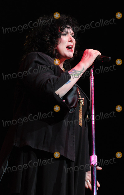 Ann Wilson Photo - 09 February 2011 - Hamilton Ontario Canada - Heart Singer Ann Wilson of Heart performs onstage at Hamilton Place during the Heart Comes Home - Canada Tour Photo Brent PerniacAdMedia
