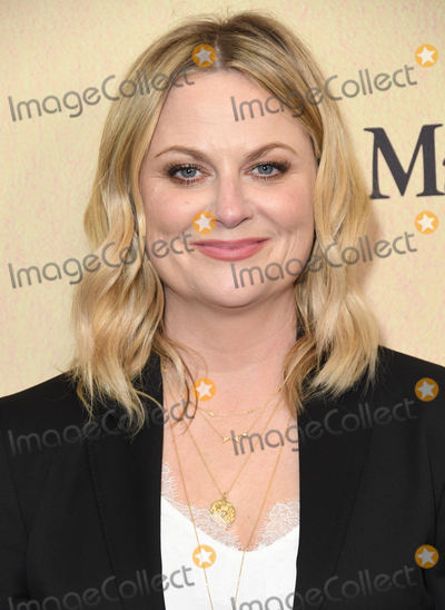 Amy Poehler Photo - 12 June 2019 - Beverly Hills California - Amy Poehler Women In Film Annual Gala 2019 Presented By Max Mara  held at Beverly Hilton Hotel Photo Credit Birdie ThompsonAdMedia