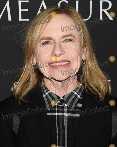 Amy Madigan Photo - 16 January 2020 - Hollywood California - Amy Madigan Roadside Attractions The Last Full Measure Los Angeles Premiere held at The Arclight Hollywood Photo Credit Billy BennightAdMedia