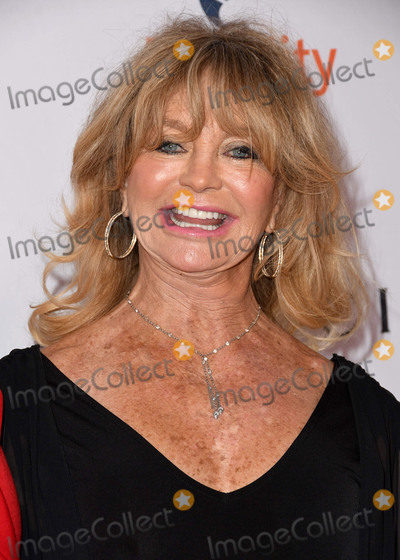 Goldie Hawn Photo - 03 December 2018 - Beverly Hills California - Goldie Hawn Equality Nows 4th Annual Make Equality Reality Gala held at The Beverly Hilton Hotel Photo Credit Birdie ThompsonAdMedia