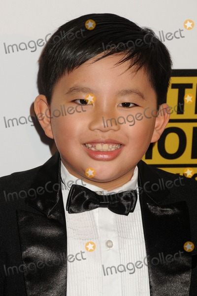 Albert Tsai Photo - 19 June 2014 - Beverly Hills California - Albert Tsai 4th Annual Critics Choice Television Awards - Arrivals held at The Beverly Hilton Hotel Photo Credit Byron PurvisAdMedia