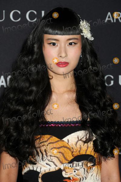Asia Chow Photo - 7 November 2015 - Los Angeles California - Asia Chow LACMA 2015 ArtFilm Gala held at LACMA Photo Credit Byron PurvisAdMedia