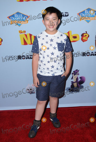 Albert Tsai Photo - 05 August  2017 - Los Angeles California - Albert Tsai  World premiere of Nut Job 2 Nutty by Nature  held at Regal Cinema at LA Live in Los Angeles Photo Credit Birdie ThompsonAdMedia
