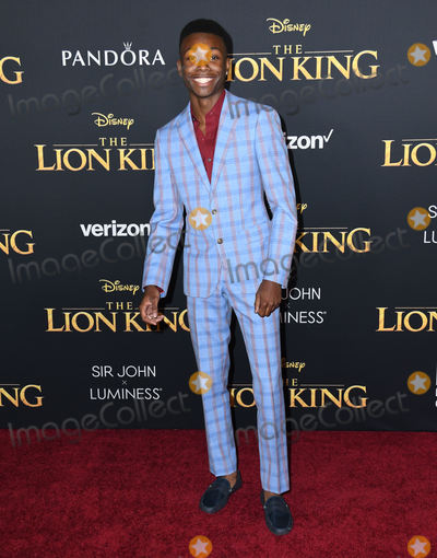 Fitch Photo - 09 July 2019 - Hollywood California - Niles Fitch Disneys The Lion King Los Angeles Premiere held at Dolby Theatre Photo Credit Birdie ThompsonAdMedia