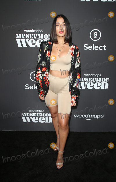 Alicia Naomi Photo - 1 August 2019 - Los Angeles California - Alicia Naomi Weedmaps Museum of Weed Exclusive Preview Celebration held at Weedmaps Museum Pop Up Photo Credit FSadouAdMedia