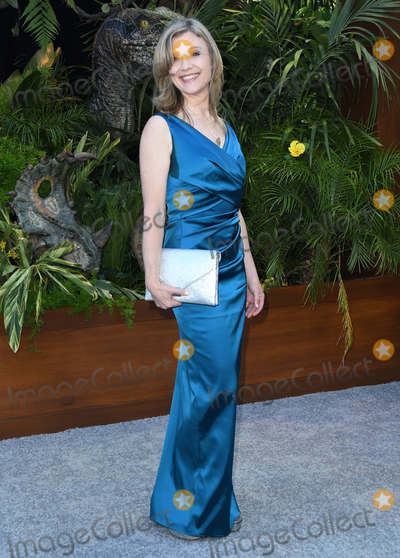 Ariana Richards Photo - 12 June 2018 - Los Angeles California - Ariana Richards Jurassic World Fallen Kingdom Los Angeles Premiere held at Walt Disney Concert Hall Photo Credit Birdie ThompsonAdMedia