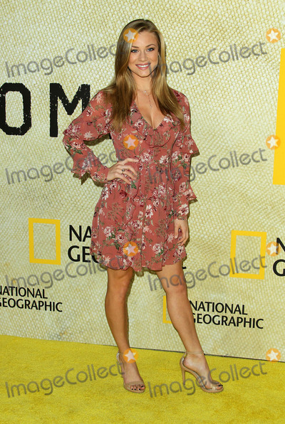 Nikki Leigh Photo - 30 October 2017 - Los Angeles California - Nikki Leigh National Geographics The Long Road Home Premiere held at Royce Hall in UCLA in Los Angeles Photo Credit AdMedia