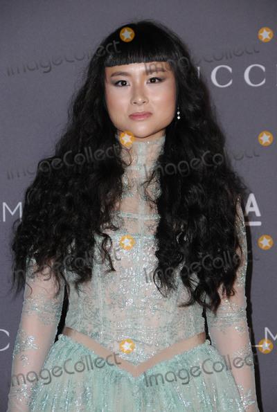 Asia Chow Photo - 04 November  2017 - Los Angeles California - Asia Chow 2017 LACMA ArtFilm Gala held at LACMA in Los Angeles Photo Credit Birdie ThompsonAdMedia