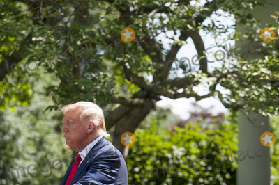 White House Photo - US President Donald Trump signs an Executive Order on The White House Hispanic Prosperity Initiative in the Rose Garden at The White House in Washington DC Thursday July 9 2020 Credit Rod LamkeyCNPAdMedia