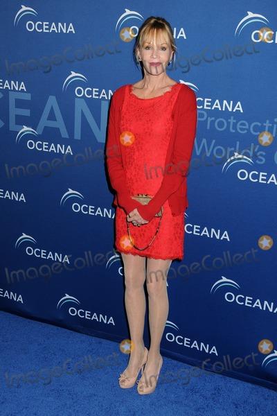 Photos From Oceana's Partners Award Gala 2013