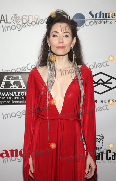 Adrienne Wilkinson Photo - 18 January 2020 - Hollywood California - Adrienne Wilkinson At The 2020 SOC Lifetime Achievement Award held at the Loews Hollywood Hotel Photo Credit FSAdMedia