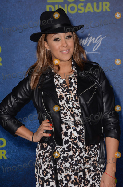 Tamera Mowry-Houser Photo - 17 November - Hollywood Ca - Tamera Mowry-Houser Arrivals for the Premiere of Disney-Pixars The Good Dinosaur held at The El Capitan Theater Photo Credit Birdie ThompsonAdMedia