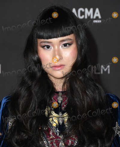 Asia Chow Photo - 02 November 2019 - Los Angeles California - Asia Chow 2019 LACMA Art  Film Gala Presented By Gucci held at LACMA Photo Credit Birdie ThompsonAdMedia