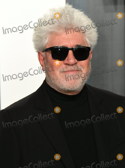 Pedro Almodovar Photo - 09 February 2020 - Los Angeles California - Pedro Almodovar 2020 Vanity Fair Oscar Party following the 92nd Academy Awards held at the Wallis Annenberg Center for the Performing Arts Photo Credit Birdie ThompsonAdMedia