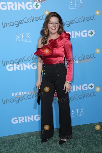Alicia Machado Photo - 06 March 2018 - Los Angeles California - Alicia Machado Premiere Of Amazon Studios And STX Films Gringo held at Regal LA Live Stadium 14  Photo Credit PMAAdMedia