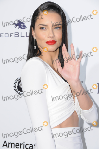 Adriana Lima Photo - 26 February 2017 - West Hollywood California - Adriana Lima 25th Annual Elton John Academy Awards Viewing Party held at West Hollywood Park Photo Credit Birdie ThompsonAdMedia