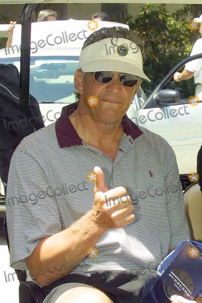 Ed Marinaro Photo - Ed Marinaro at the 5th Annual Academy of Television Arts  Sciences Foundation Celebrity Golf Classic at the Riviera Country Club Pacific Palisades CA 04-26-04