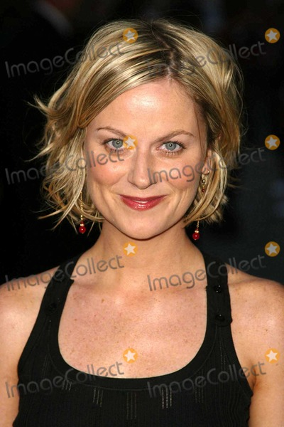 Amy Poehler Photo - Amy Poehler at Paramount Pictures World Premiere of Mean Girls in the Cinerama Dome Hollywood CA 04-19-04