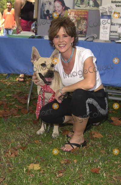 Linda Blair Photo -  Linda Blair at Worldfest LA to help promote Veganism Animal Rights and other causes Van Nuys 07-30-00