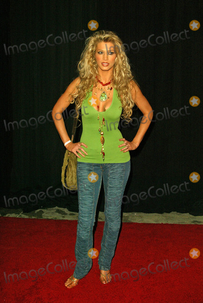 Amber Smith Photo - Amber Smith at the Maxim Magazines Hot 100 Party Montmartre Lounge Hollywood CA 05-12-05