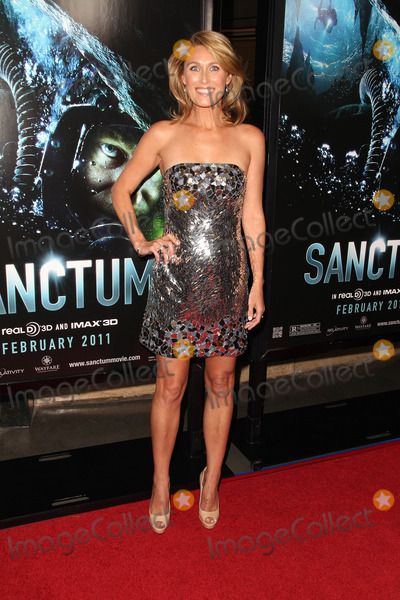 ALLISON CRATCHLEY Photo - Allison Cratchleyat the World Premiere of Sanctum Manns Chinese 6 Hollywood CA 01-31-11